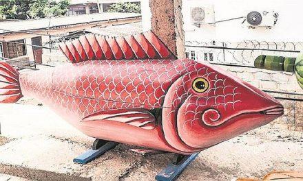 ASÍ SE MUERE EN PAZ | Empresa funeraria vende ataúdes en forma de pez, chimpún o biblia