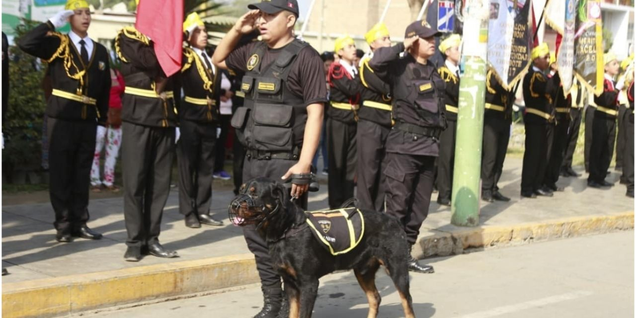 BIENVENIDO A LA FAMILIA | Él es «King», el nuevo integrante de la brigada canina del distrito de Laredo