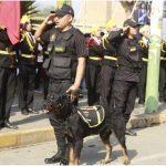 BIENVENIDO A LA FAMILIA   Él es «King», el nuevo integrante de la brigada canina del distrito de Laredo