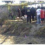 MÁS ASESINATOS | Matan a balazos a dos trabajadores de construcción civil en San Pedro de Lloc