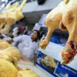 LOS MÁS POLLEROS | Perú es el mayor consumidor de pollo en Latinoamérica: Llegará a 48 kilos por persona este año