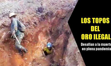 ¡INDIGNANTE! SOMETEN A TRABAJOS INFRAHUMANOS EN BUSCA DEL ORO | Minería ilegal desafía al coronavirus en plena pandemia (FOTOS Y VIDEO)